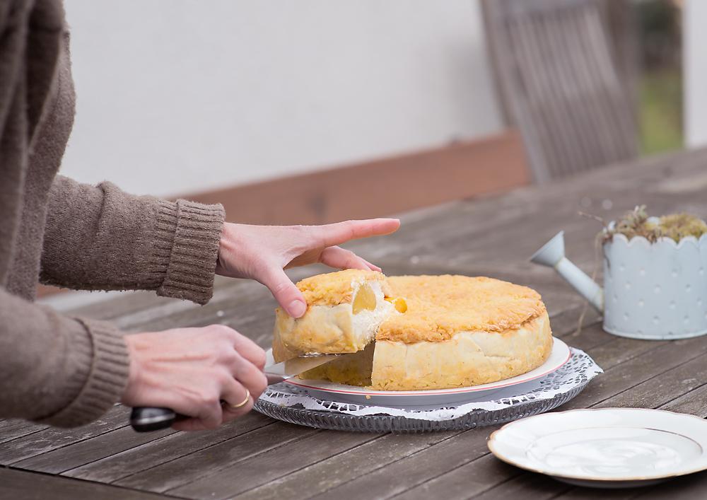 Topfen-Pfirsich-Streuselkuchen Anschnitt